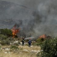 Tourists Evacuated on Greek Island as Wildfire Rages Nearby