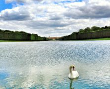Climate Change Is Devastating the Lush Gardens of Versailles